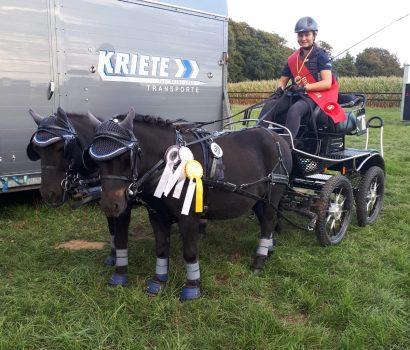 Annabel Kriete gewinnt die Kreismeisterschaft Fahren mit Zweispänner